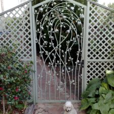 Steel-Gates-and-Fence-Creations-Tullamarine-Attwood-Campbellfield-Broadmeadows-VICrosevine1
